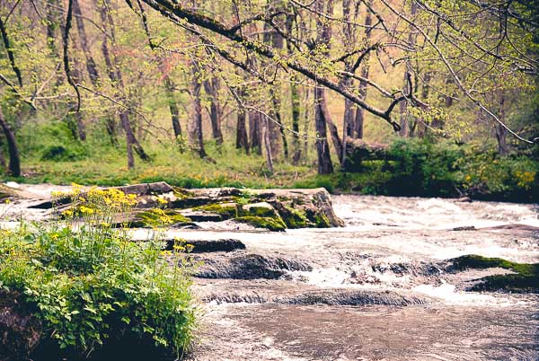 Free Stock Photos for Blogs - Mountain River 1