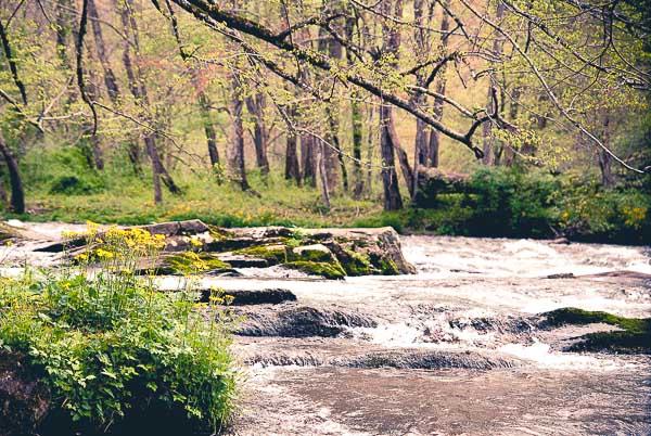 Free Stock Photos for Blogs - Mountain River 1