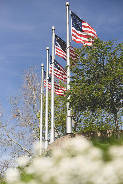 Free Stock Photos for Blogs - War Memorial American Flags 1