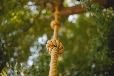 Free Stock Photos for Blogs - Rope Climber 1