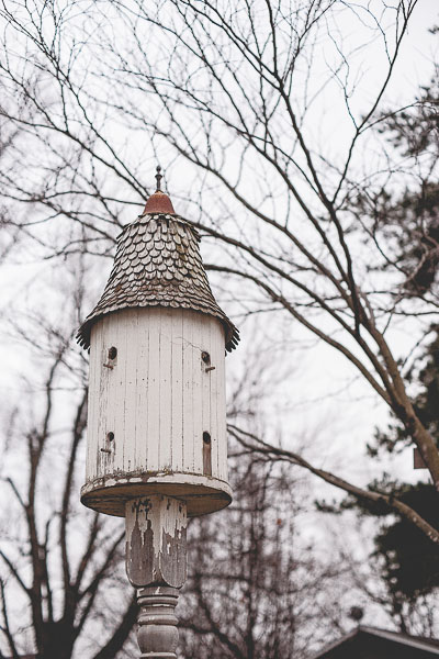 Free Stock Photos for Blogs - Ornate Birdhouse 1