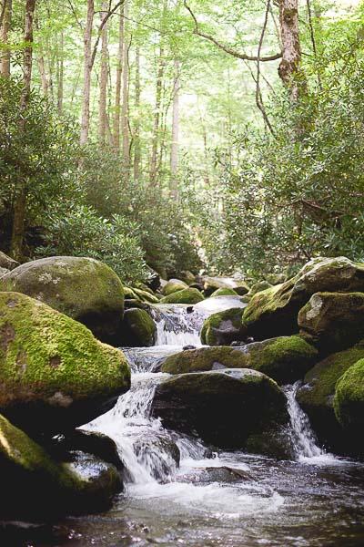 Free Stock Photos for Blogs - Mountain Stream Waterfall 2