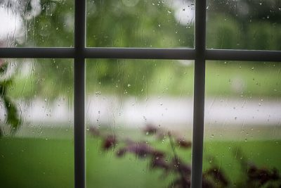 Free Stock Photos for Blogs - Rainy Day Window 1