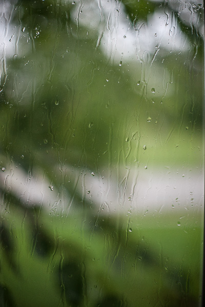 Free Stock Photos for Blogs - Rainy Day Window 3