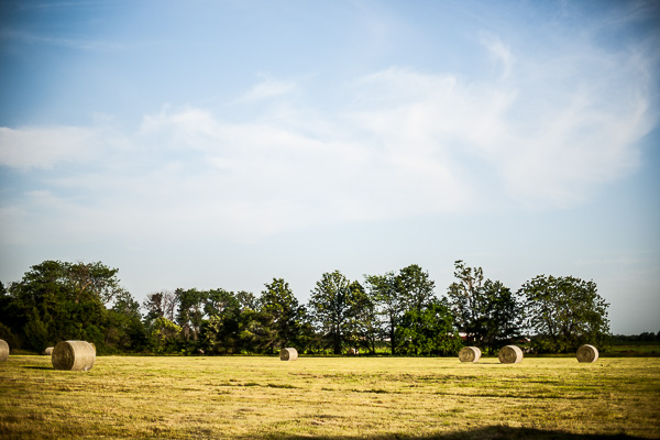 Free Stock Photos for Blogs - Farm Field with Hay 1