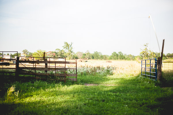Free Stock Photos for Blogs - Farm Field and Gate 1