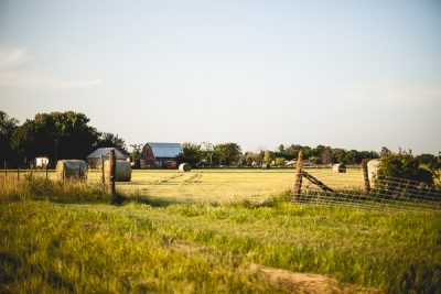 Free Stock Photos for Blogs - Farm Field 1
