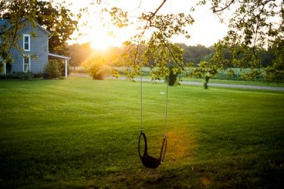 Free Stock Photos for Blogs - Tree Swing 2