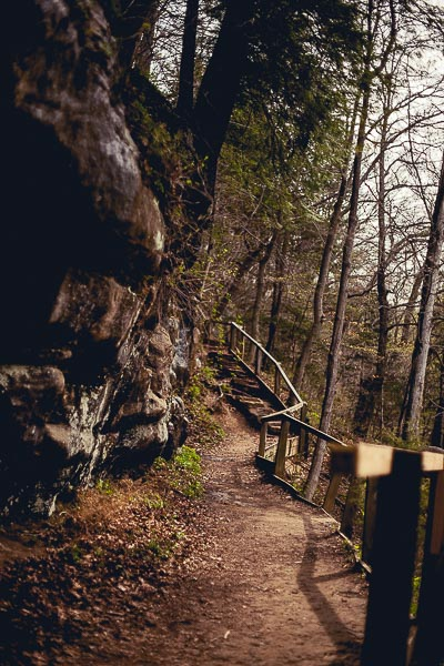 Free Stock Photos for Blogs - Hiking Trail 1
