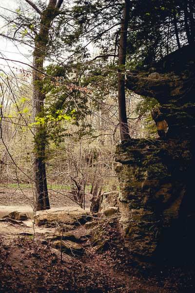 Free Stock Photos for Blogs - State Park 1