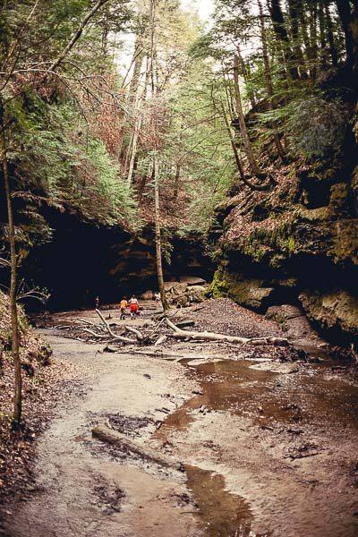 Free Stock Photos for Blogs - State Park 4