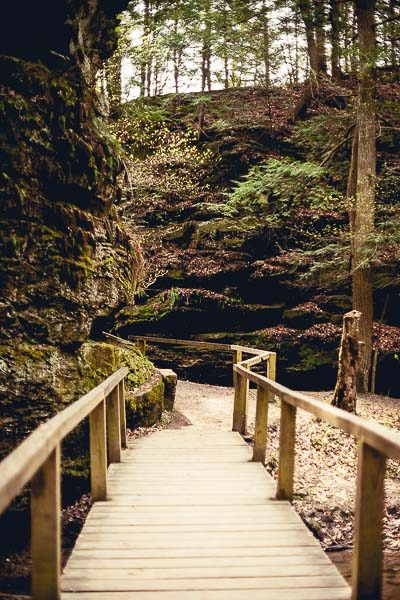 Free Stock Photos for Blogs - Hiking Trail 2