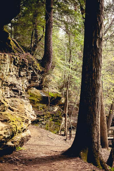 Free Stock Photos for Blogs - Hiking Trail 3