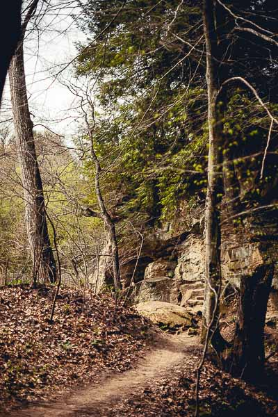 Free Stock Photos for Blogs - Hiking Trail 4