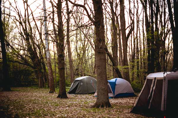 Free Stock Photos for Blogs - Camping Tents 3