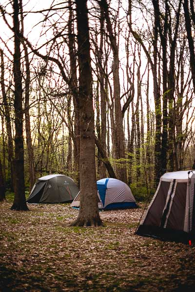 Free Stock Photos for Blogs - Camping Tents 4
