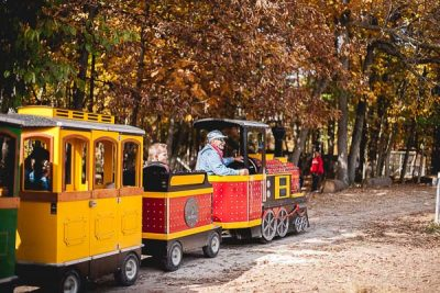 Free Stock Photos for Blogs - Fair Train Ride 1