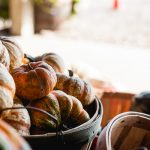 Free Stock Photos for Blogs - Pumpkin Patch 5