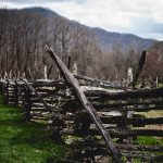 Free Stock Photos for Blogs - Mountain Fence Row 1