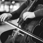 Free Stock Photos for Blogs - Playing the Cello 4