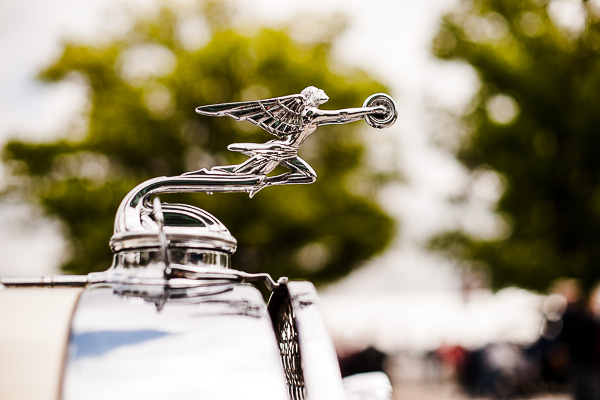 Free Stock Photos for Blogs - Classic Car Hood Ornament 6