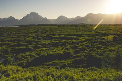 Free Stock Photos for Blogs - Teton Mountains 3