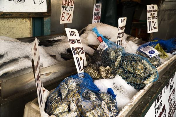 Free Stock Photos for Blogs - Fish Market