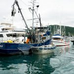 Free Stock Photos for Blogs - Fishing Boats 2