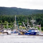 Free Stock Photos for Blogs - Fishing Boats 4