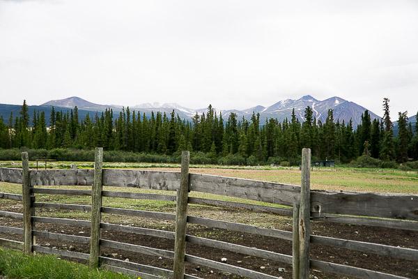 Free Stock Photos for Blogs - Alaska Mountain View